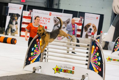 Superdogs (March 23 and 24)